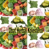 Obat Herbal Kolesterol Alami icon