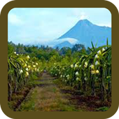 Mountains and Village Puzzle icon