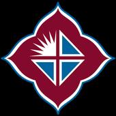 ikon Agnesian eHealth