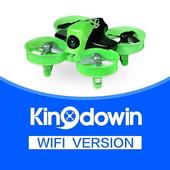 Kingdowin icon