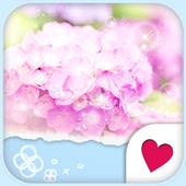 Cute wallpaper★Rainy Sweet icon
