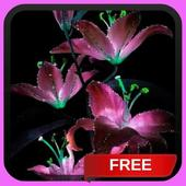 Glitter Lilies Live Wallpaper LWP Background Theme icon