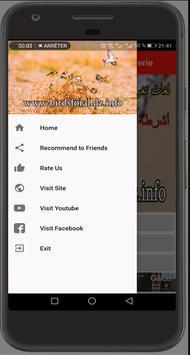 Chant Chardonneret Algerie screenshot 1