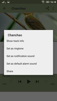 Chanchão de Pássaros apk screenshot