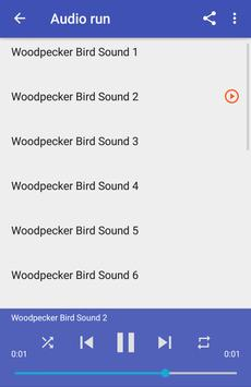 Woodpecker Bird Sounds apk screenshot