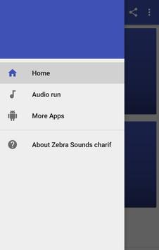 Zebra Sounds poster