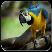 Parrot sounds icon