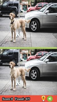 Spot the Differences Between Two Pictures apk screenshot