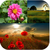 Cute Nature Wallpapers icon