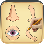 Draw human body parts icon
