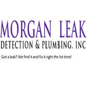 Morgan Leak Detection Plumbing icon