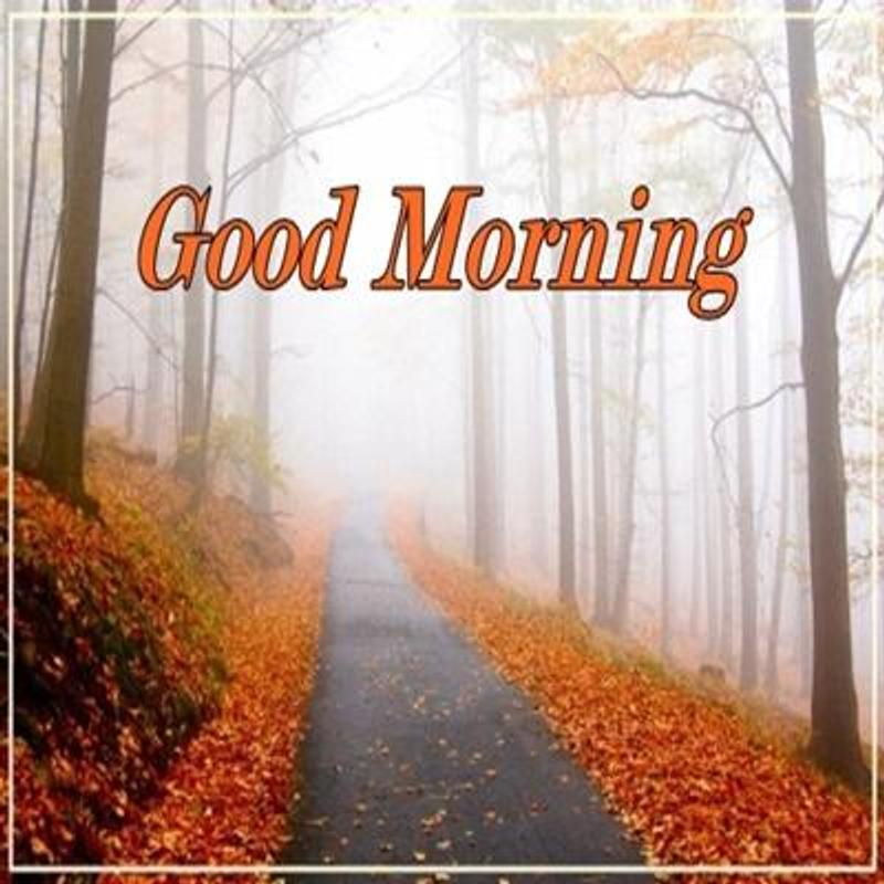 Nature Good Morning For Android Apk Download