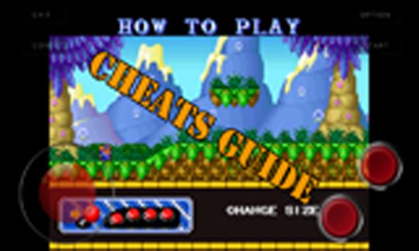 Cheats Guide(for Raguy) poster