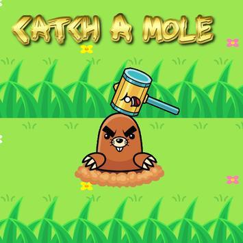 Catch A Mole poster