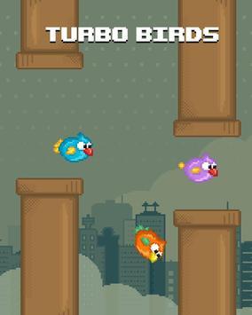 Turbo Birds: Fun Race poster