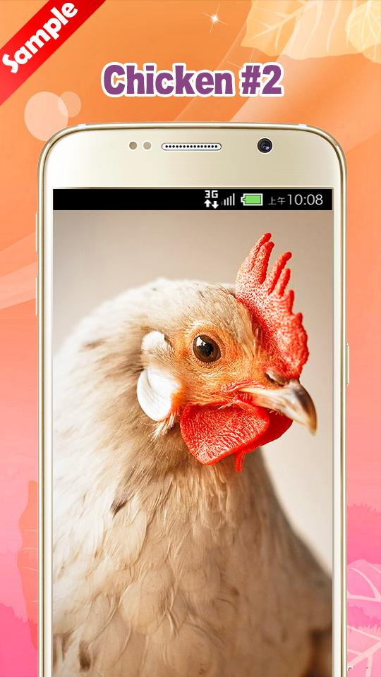 Chicken Wallpaper For Android Apk Download