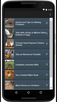 Chickens screenshot 1
