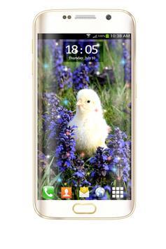 Chicks HD Live Wallpaper screenshot 11