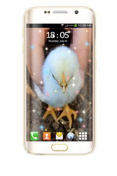 Chicks HD Live Wallpaper screenshot 3