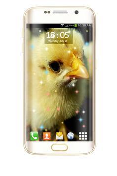Chicks HD Live Wallpaper screenshot 4