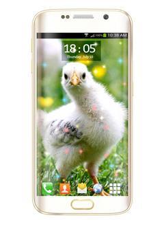 Chicks HD Live Wallpaper screenshot 7