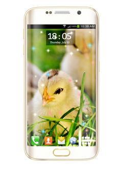 Chicks HD Live Wallpaper screenshot 8