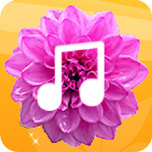 Floral Launcher icon