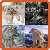Animated Wolf GIF icon