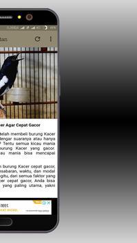 Master Kicau Kacer screenshot 4