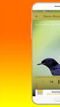 Kicau Burung Murai Batu screenshot 2
