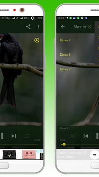 Kicau Burung Srigunting screenshot 1