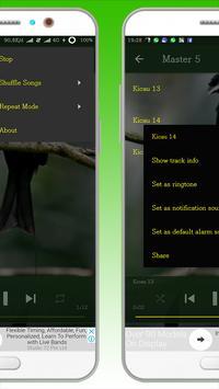 Kicau Burung Srigunting screenshot 2