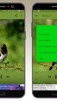 Kicau Burung Pipit screenshot 1