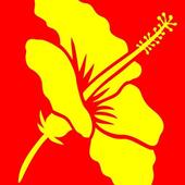 Libraries Hawaii icon