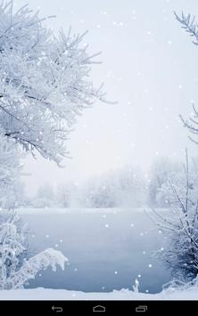 Winter Wallpaper apk screenshot