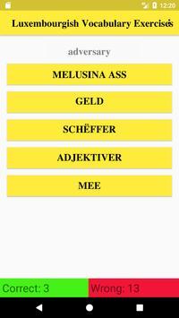 Luxembourgish Vocabulary screenshot 1