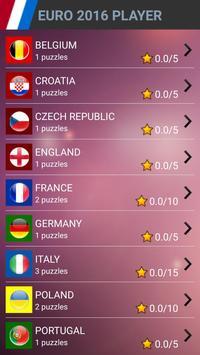 EURO 2016 PLAYER SEARCH WORD apk screenshot