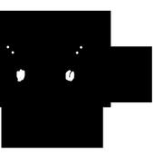 Secret Video Recorder SPY Cam icon
