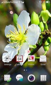 Apricot Blossom Live Wallpaper HD 4K screenshot 5