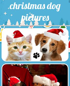 Christmas Dog Pictures poster