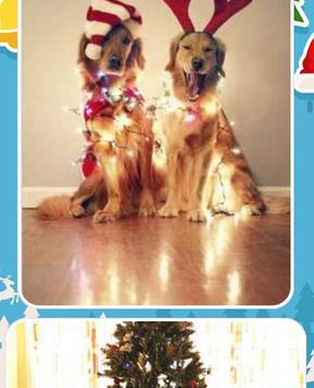 Christmas Dog Pictures screenshot 5
