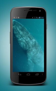 Whale Live Wallpaper screenshot 1