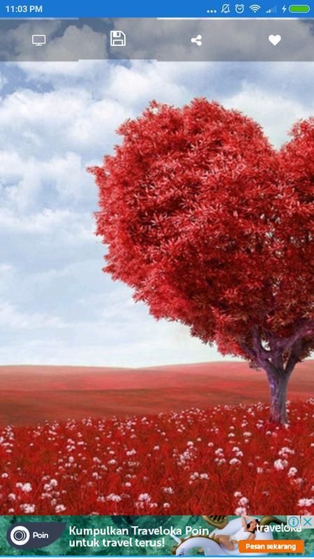 Fall In Love Wallpaper Apk Screenshot