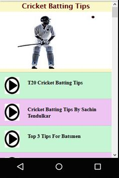 Cricket Batting Guide poster