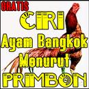 Ciri ayam bangkok Menurut Primbon APK