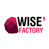 Wise Factory icon