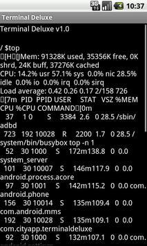 Terminal Emulator screenshot 3