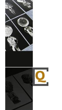 Civitas Quarterly Magazines apk screenshot