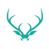 InsideDFB icon