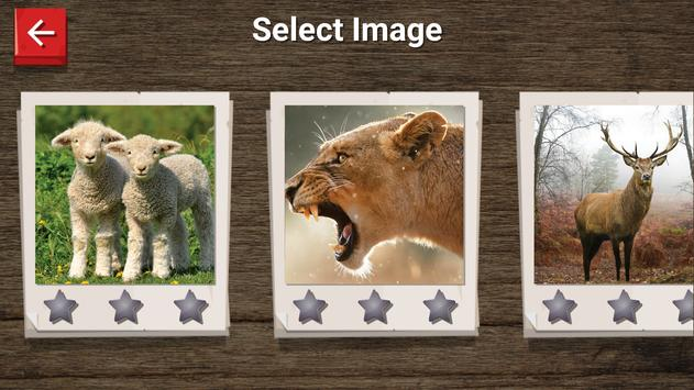 Animal Jigsaw puzzle screenshot 8
